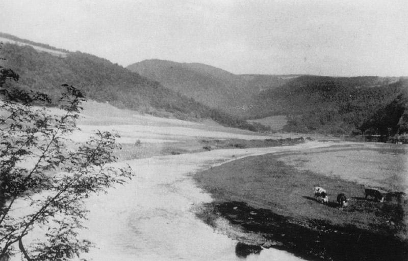 Die Wied am Steinkümpel in Richtung Roßbach - 1910