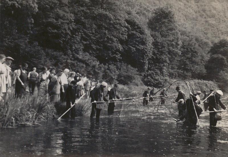 Fischzug 1941