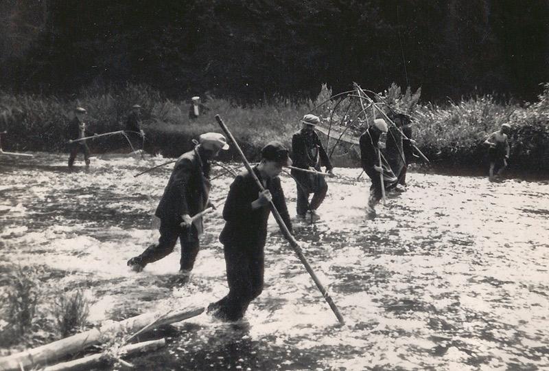 """Fischzug 1941 Im Vordergrund und hinten rechts die """"Treiber"""", die mit den Holzstangen die Fische aufscheuchen"""
