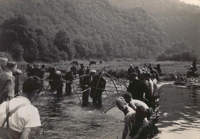 Fischzug 1941- Ende  Im Hintergrund rechts Hochscheider Seifen mit Hahnestein
