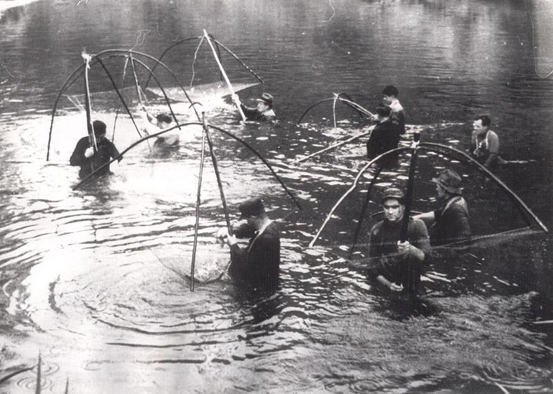 Fischzug - bis zum Hals im Wasser
