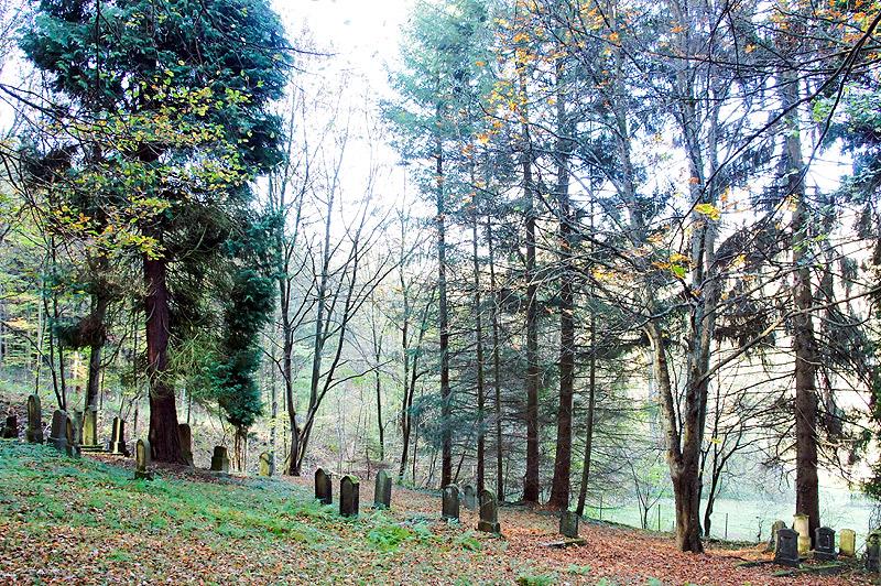 Judenfriedhof 2013