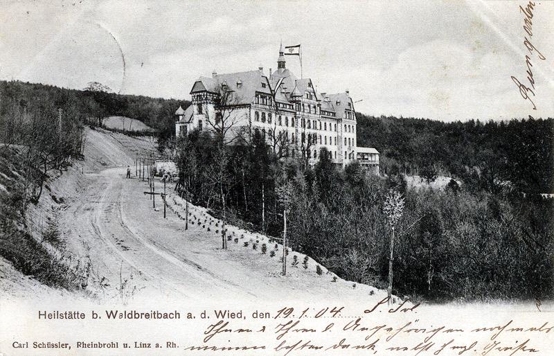 Zufahrt mit Erstbepflanzung 1904